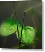 Zen Photography Iv Metal Print