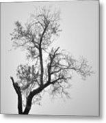 Zen Tree Metal Print