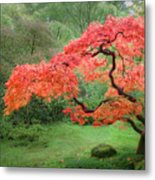 Zen Tree Metal Print