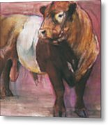 Zeus  Red Belted Galloway Bull Metal Print