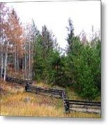 Zigzag Rail Fence Metal Print
