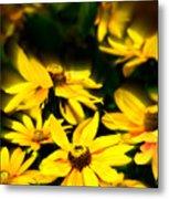 Zinnia Flower Metal Print
