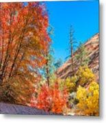 Zion Autumn Colors Metal Print