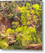 Zion National Park Small Tributary Of The Virgin River Metal Print