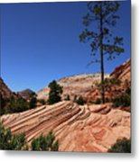 Zion Park Colors And Texture Metal Print