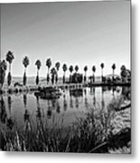 Zyzzx Lake Two Metal Print