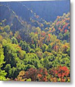 Autumn Color On Newfound Gap Road In Smoky Mountains National Park Metal Print