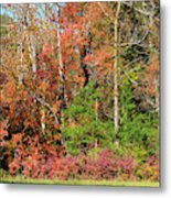 Autumn Colours In Great Smoky Mountains National Park Metal Print