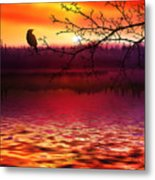 Beautiful Landscape Metal Print