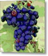 Blue Grape Bunches 6 Metal Print