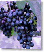 Blue Grape Bunches 7 Metal Print