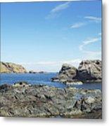 cliffs and coast at St. Abbs, Berwickshire Metal Print
