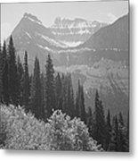 In Glacier National Park Metal Print