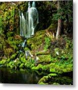 Mossy Falls Metal Print