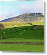 Penyghent In Yorkshire Dales National Park North Yorkshire Metal Print