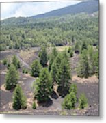 Photography Landscape Shot From The Etna National Park On Sicily Metal Print