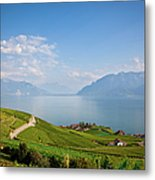 Vineyards Around Lake Leman Metal Print