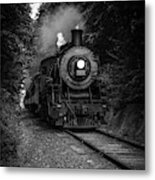 Whistle Through The Forest Metal Print