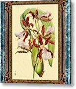 Vintage Orchid Antique Design Marble Blue-green  Metal Print