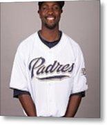 2010 Major League Baseball Photo Day Metal Print