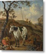 A White Horse Standing By A Sleeping Man  Metal Print