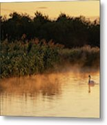 Beautiful Dawn Landscape Image Of River Thames At Lechlade-on-th Metal Print