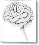 Brain, Artwork Metal Print