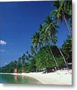 Palm Trees At Sandy Chaweng Beach Metal Print