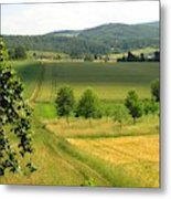 Photograph Of A Field In Germany Metal Print