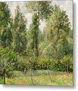 Poplars  Eragny  Metal Print