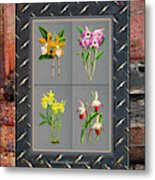 Orchids Antique Quadro Weathered Plank Rusty Metal Metal Print