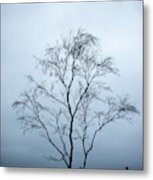 Moody Winter Landscape Image Of Skeletal Trees In Peak District  Metal Print