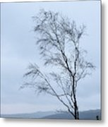 Moody Winter Landscape Image Of Skeletal Trees In Peak District  Metal Print
