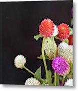 7191-multicolor Metal Print
