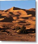 A Caravan In The Desert Metal Print