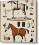 A Chromolithograph Of Horses With Antique Horseback Riding Equipments   1890  Metal Print