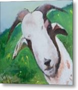 A Goat To Love Metal Print