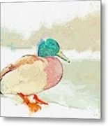 A Migrating Loon, Oslo, Norway -  Watercolor By Adam Asar Metal Print