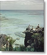 A Nice Spot For Lunch Metal Print