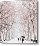A Snowy Lane Metal Print