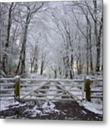 A Snowy Scene Metal Print