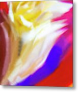 A White Rose In An Abstract Style. Metal Print