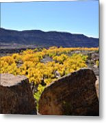 Gorgeous View Of Golden Cottonwood Trees In Canyon Metal Print