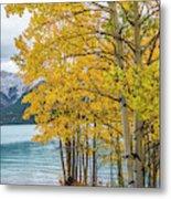 Abraham Lake Metal Print