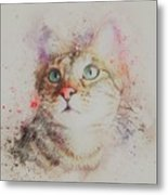 Abyssinian Cat Metal Print
