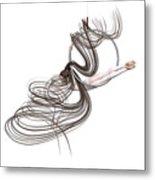 Aerial Hoop Dancing Happiness Metal Print