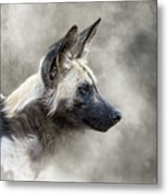 African Wild Dog In The Dust Metal Print
