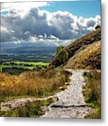 After The Rain On The Trail Metal Print