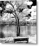 Along The River At Washington Crossing In New Jersey Metal Print