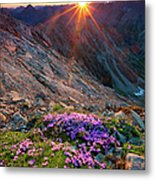 Alpine Sunrise With Flowers In The Metal Print